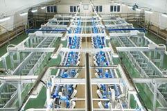 Молокозавод доя ферму системы Стоковое Изображение