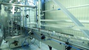 Молокозавод производит молоко Конец-вверх транспортера видеоматериал