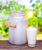 Молоко в алюминиевой чонсервной банке и стекле. стоковые изображения