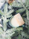 Молоко и печенья на в зима вертикаль взгляд сверху Стоковые Фото