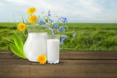 Молоко и солнечное поле весны Стоковое фото RF