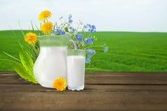 Молоко и солнечное поле весны Стоковые Фото