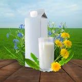 Молоко и солнечное поле весны Стоковые Фотографии RF