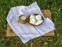 Молоко и сыр на траве Стоковое фото RF