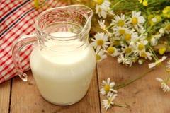 молоко кувшина Стоковые Изображения RF