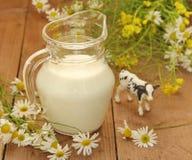 молоко кувшина Стоковое Изображение