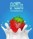 Молоко клубники Стоковые Изображения