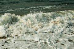 Молоко океана Стоковая Фотография