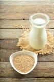 Молоко сезама Vegan в стекле Стоковые Фото