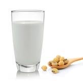 Молоко с фасолями сои на белой предпосылке Стоковое Изображение