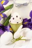 молоко яичек Стоковое Фото