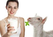 молоко стоковая фотография