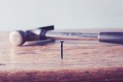 Молоток и ноготь Стоковые Изображения RF