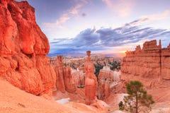 Молоток Тора, каньон Bryce Стоковое Фото