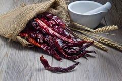молоток chili и еды с чашкой Стоковые Фото
