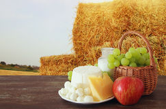 молочные продучты и плодоовощи Символы еврейского праздника - Shavuot стоковые изображения rf
