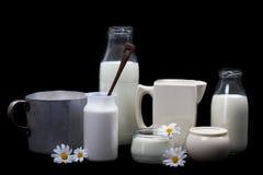 Молочные продучты Стоковые Изображения