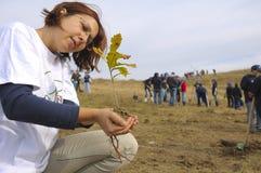 молодая дама с деревцем стоковое фото rf