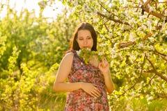 Молодая беременная женщина в зацветая саде Стоковые Фото
