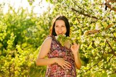Молодая беременная женщина в зацветая саде стоковые фотографии rf