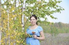 Молодая беременная женщина в поле около дерева березы Стоковые Фото