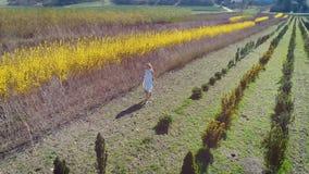 Молодая белокурая женщина идет с белым платьем полем сток-видео