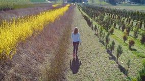 Молодая белокурая женщина идя с джинсами через поле акции видеоматериалы