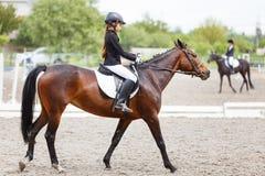 Молодая верховая лошадь девочка-подростка на dressage Стоковое фото RF