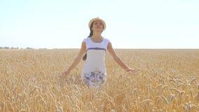 Молодая женщина в белом платье идя в поле пшеницы сток-видео