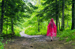 Молодая женщина в красном плаще идя в осень Стоковое фото RF