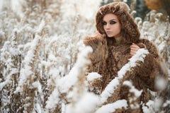 Молодая женщина в мехе зима напольная Стоковые Изображения