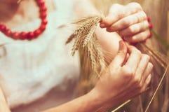 Молодая женщина в поле с пшеницей стоковое изображение rf
