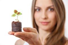 Молодая женщина держа завод, росток coleus Стоковое Фото