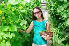 Молодая женщина держа корзину растительности и лука Стоковые Фотографии RF