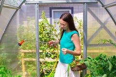Молодая женщина держа корзину растительности и лука Стоковое Изображение