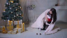 Молодая женщина имея потеху с ее собакой на рождестве украсила дерево сток-видео