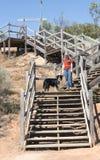 Молодая женщина и собака идя вниз с шагов Стоковые Изображения RF