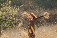 Молодая женщина идя в золотое поле высушенной травы Стоковая Фотография RF