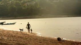 Молодая женщина идя с ее собаками на пляже акции видеоматериалы