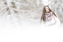 Молодая женщина на зиме стоковая фотография rf
