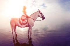 Молодая женщина на лошади Всадник спины лошади, верховая лошадь женщины на b стоковое изображение