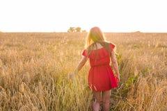 Молодая женщина нося красное платье на поле лета, заднем взгляде Стоковые Изображения