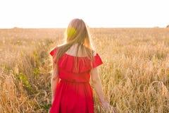 Молодая женщина нося красное платье на поле лета, заднем взгляде Стоковая Фотография