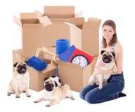 Молодая женщина при коричневые картонные коробки и собаки мопса изолированные дальше стоковые изображения rf