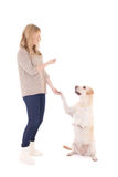 Молодая женщина при собака изолированная на белизне Стоковая Фотография