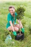 Молодая женщина садовничая для общины стоковая фотография