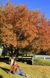 Молодая женщина сидя под цветя грушевым дерев деревом Стоковые Изображения