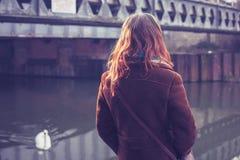 Молодая женщина смотря лебедя стоковое фото