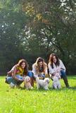 Молодая женщина 3 с их собаками в парке Стоковая Фотография RF