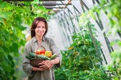 Молодая женщина с корзиной растительности и овощей в парнике время хлебоуборки к Стоковая Фотография RF